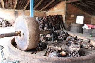 Roasted hulls to be crushed
